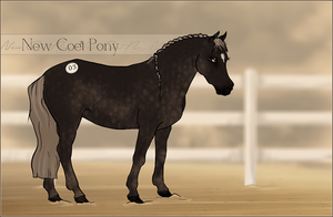 HIP #3 - New Coet Pony Adoptable by Yumpy