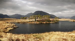 Connemara 5 by lornamacdonald