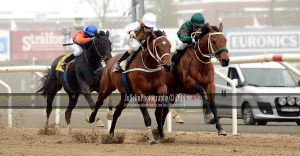 Horse Racing 250 by JullelinPhotography