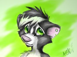 Skunk Guy by RaiynClowd