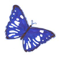blue butterfly by F10R3LL4