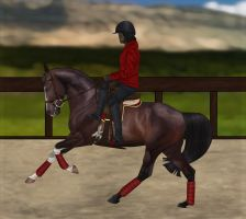 POYS 2015 Training- Enigma by WB-Equine-Art