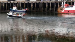 Boats at Whitby Harbour (2) by PaulineMoss