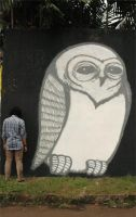 a BIG owl by dernor