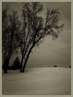 iPhoneography, Silence by Gerald-Bostock