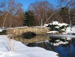Binney Park in Winter by davincipoppalag