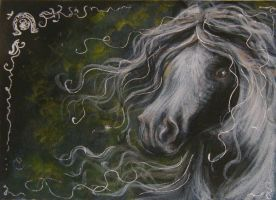 Gypsy Horse ACEO by BlackAngel-Diana