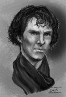 benedict Cumberbatch  (Study) by maugryph