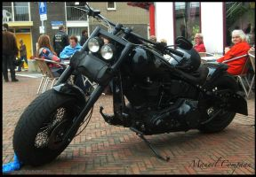 Harley-Davidson Fatboy by compaan-art