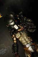 CLASSIC PREDATOR HOT TOYS 13 by JIN17094