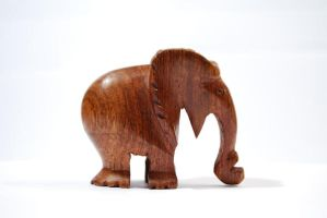 Wooden Elephant by krazy3