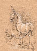 Unicorn drawing by Noukah
