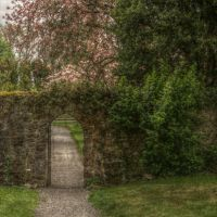 Birr 6 - The secret passage by Isyala
