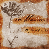 In Bloom - 12 floral brushes by sleepwalkerfish
