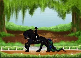 Galassio- Dressage by emmy1320