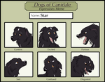 Dogs of Canidale- Expression Meme by AuroraIkia
