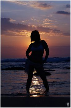Sunset Silhouette by Diabos