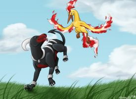 Houndoom and Moltres by moltres93