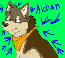 Aidian by Huskybooty