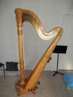 My Harp Gilligan by OwossoHarpist