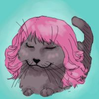 kittywigs by GRAMMAR