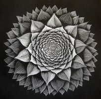 mandala57 second entry for whiteonblack challange by hadas64
