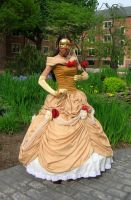 Belle Masquerade by AllenGale