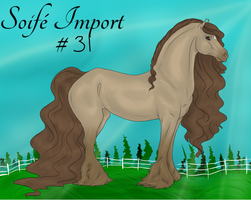 Soife Import 31 by NativeWolf330