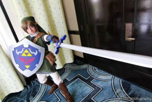 Link  Mizucon 2013 by SAYA-LOURA