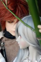 Lovely Pair 04 by deVIOsART