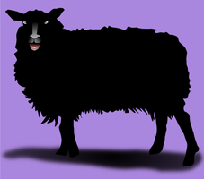 Black Sheep by QuicheLoraine