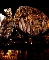 Organ Pipes I by net