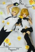 Vocaloid Group Cosplay by Mcosplay