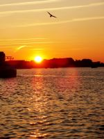 Sunset at the harbor Rostock (4) by Olessa