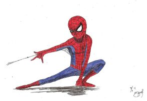 Spider-man by sfdesignproject