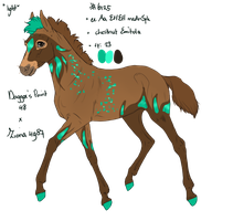 6125 foal design by UnknownRidersStable