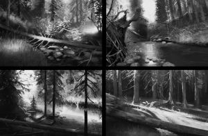 Value forest studies by Detkef