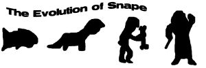 The Evolution of Snape by Hogwarts-Castle
