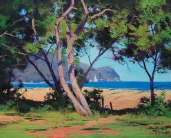 Australian Coast by artsaus