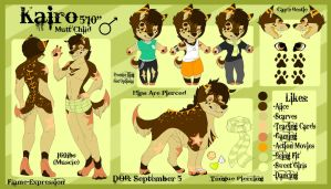 Kairo Ref 2015 by Flame-Expression