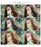 Lightroom 4 presets: Pack of 5 by CrazyMurdock1