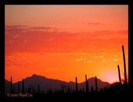Late August Monsoon Sunset by RooCat