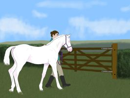3144 Blind Faith- Halter Training by PhantomHeir-Stables