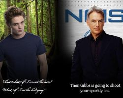 NCIS vs Twilight by broken-rebel-666