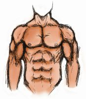 Muscle Torso by Thue