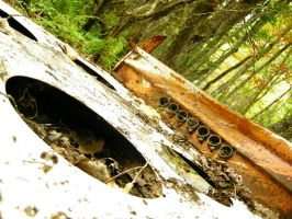 A Stove In the Forest by Artful-Krayons