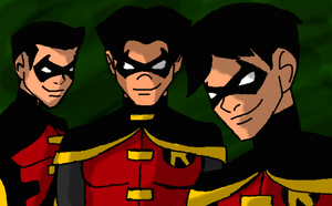 The Robins by Maygirl96