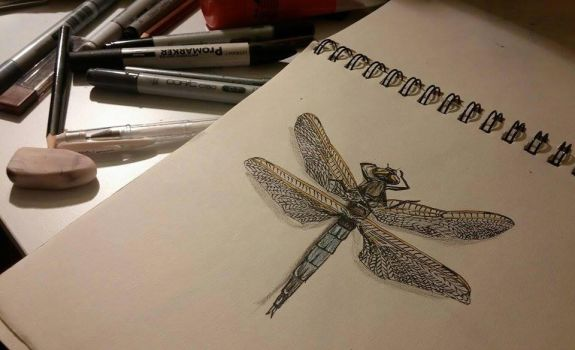 Dragonfly by ezgicelep