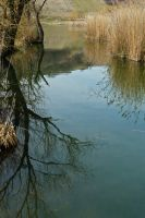 Lac Saint Andre in March by organicvision