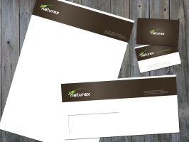 Naturex Logo Corporate by grafiket